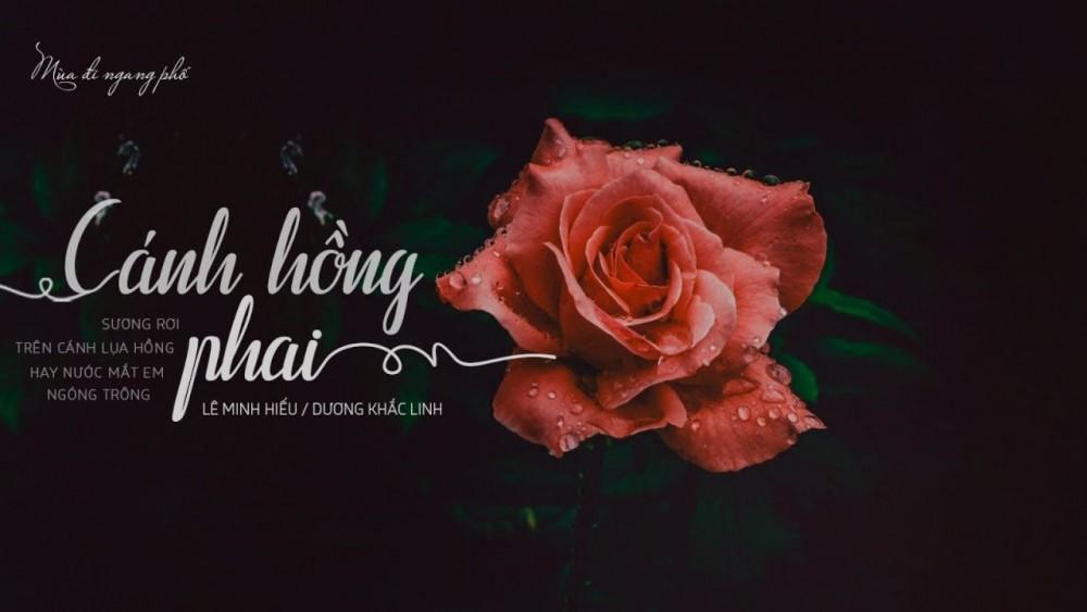 Lời bài hát Cánh Hồng Phai [Hoàng Yến Chibi] [Lyrics Kèm Hợp Âm]