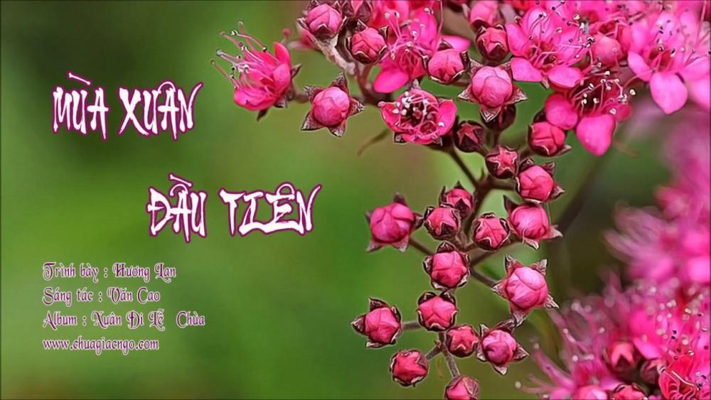 Lời bài hát Mùa Xuân Đầu Tiên [Như Quỳnh x Thế Sơn] [Lyrics Kèm Hợp Âm]