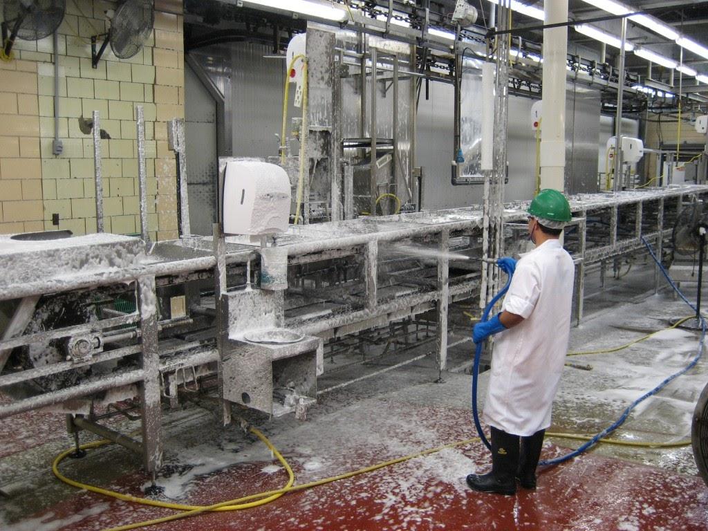 Các công ty cần thực hiện vệ sinh nhà xưởng thường xuyên.